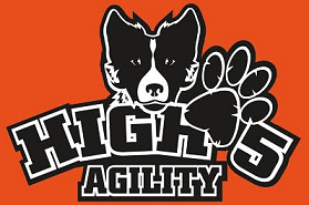 High Five Agility logo
